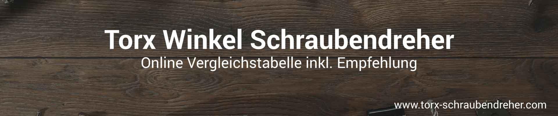 Torx Winkel Schraubendreher